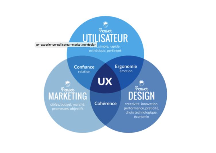 L'utilisateur, le design et le marketing